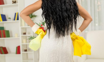 How to Keep Your Home Clean Between Professional Cleaning Visits