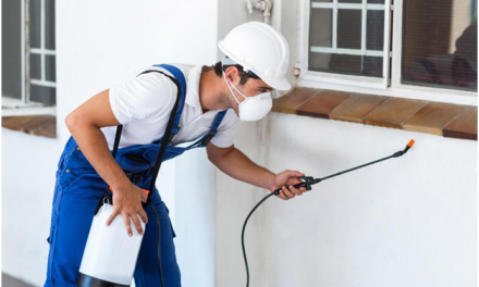 3 Signs You Need to Call For Pest Control