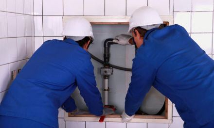 The Importance of Regular Plumbing Inspections