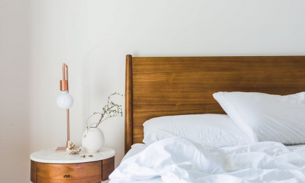 3 Spaces in Your House Where a Bed Bug Might Be Hiding