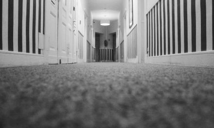 3 Worth-It Reasons to Hire a Professional Carpet Cleaning Service