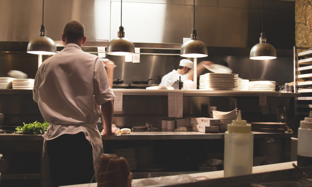 The 3 Most Common Bugs Found in Restaurants