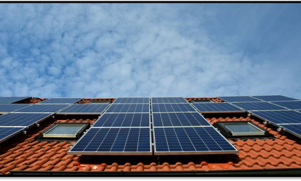 Preparing For Summer: How to Keep Your Solar Panels Clean