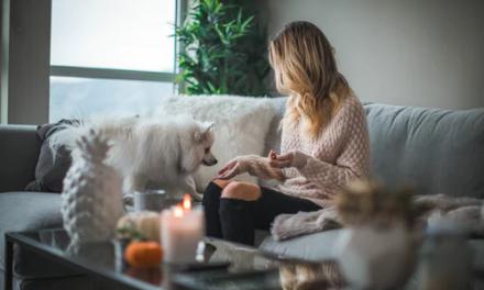 Ways to Prevent Indoor Allergies in Your Home