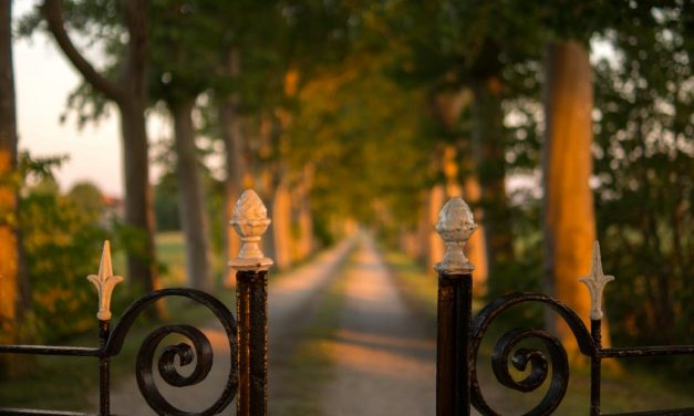 Everything You Need to Know About Automatic Gates