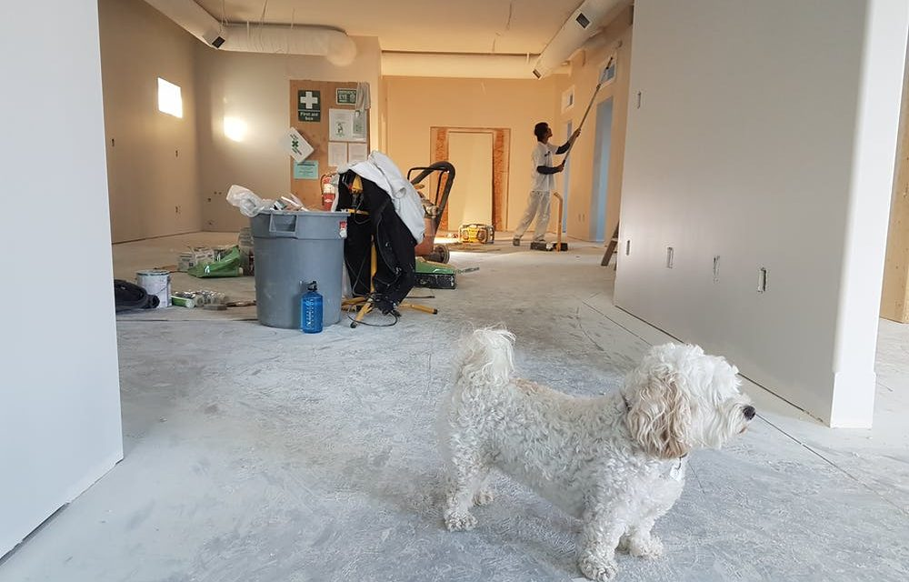 Home Renovation: A Complete Checklist