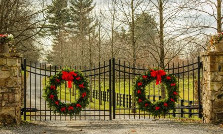 4 Reasons Why You Should Consider Getting an Electric Gate