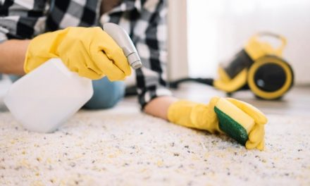 Why DIY Carpet Cleaning Is a Bad Idea