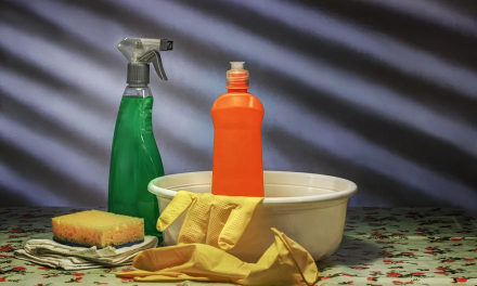 Fact or Fiction: Does Liquid Detergent Clog Pipes?