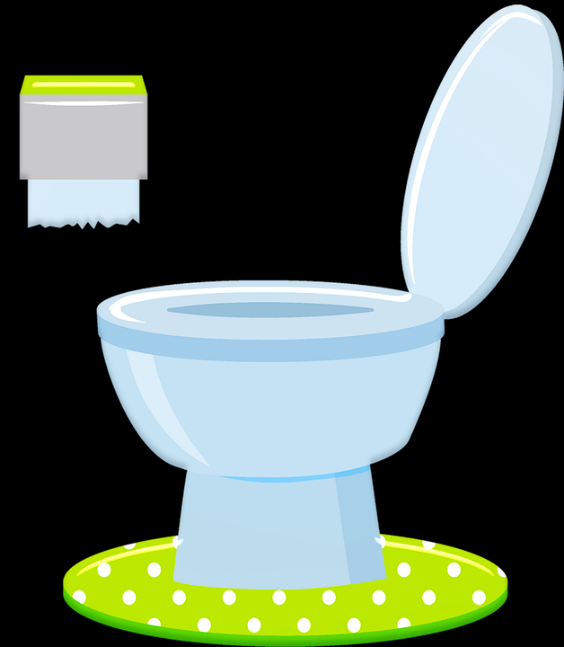 toilet emits a sulfur smell