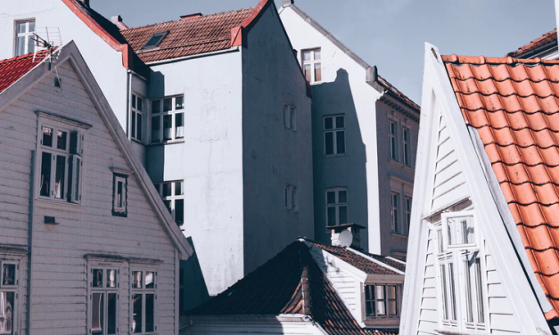 DIY vs. Professional Roof Repair: Which One Should You Opt for?