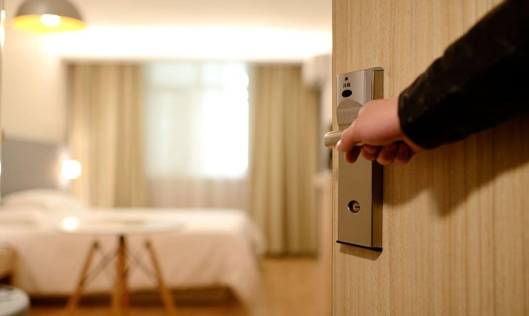 Common Pests Found In Hotels and How to Avoid Them