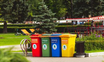 5 Negative Effects of Improper Garbage Disposal