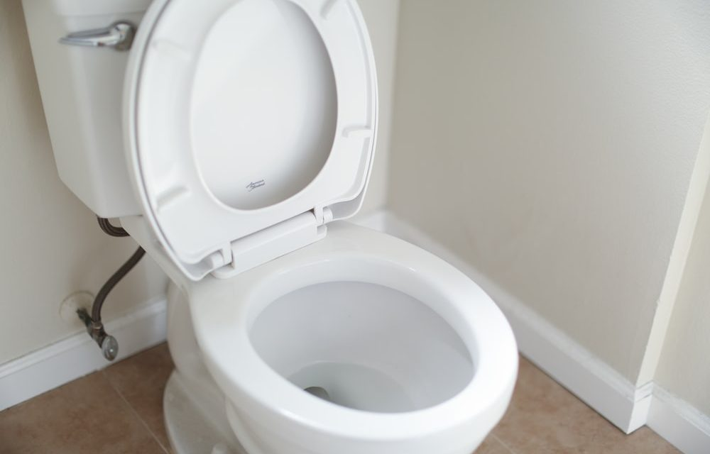 What is a Toilet Flange?