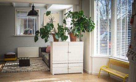 Wooden Shades: The New Eco-Friendly Window Interior Design