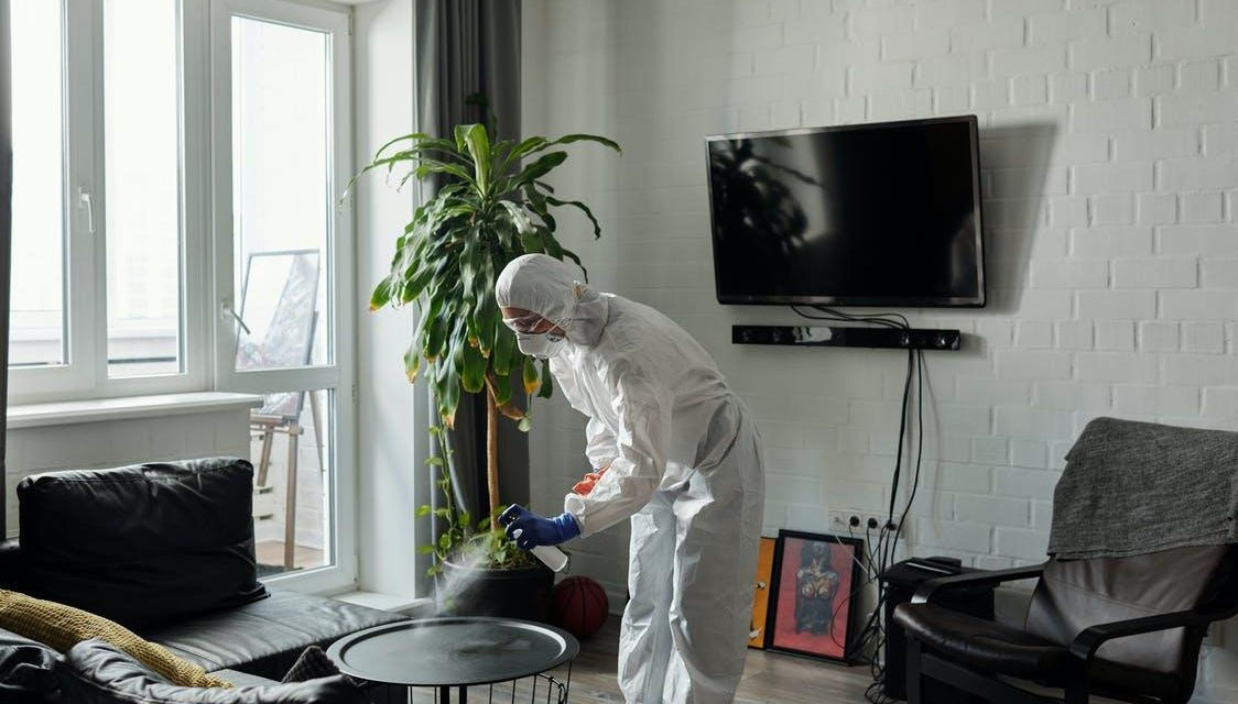 5 Reasons to Hire a Pest Control Company