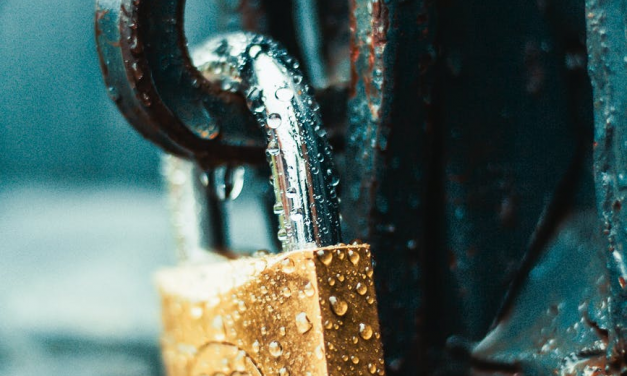 Reasons Why Lock Picking Should Be Your New Hobby