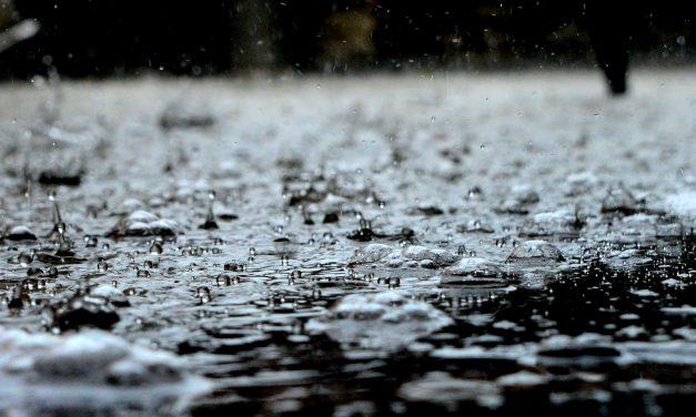 4 Green Plumbing Tips to Save Water